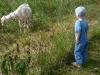 u pastviny