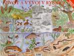 Život a vývoj v rybníce – puzzle