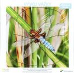 Vývoj vážky – puzzle