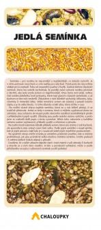 Jedlá semínka