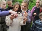 vzdělávací pobyt v Horním Maršově