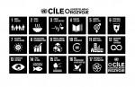 E Sustainable Development Goals