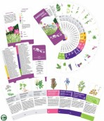 Určovací klíč – Kvetoucí rostliny